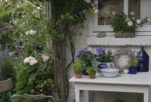 Sweet Little Cottage / by Belinda Stuetelberg