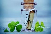 Crafts: Miniature Bottles & Vials / by Karen