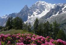 Billia Hotel Casino Saint Vincent - Val d'Aosta - Italy