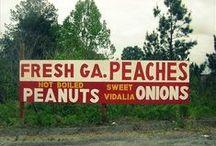 Georgia is Peachy! / Everyone loves a Georgia peach! This Board celebrates our love of Georgia -- and peaches of course.