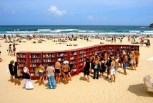 Travel Books / Love of books and reading. Libraries, Travel Books, Favorite Books, Gift Books, Book stores, Travel Guides