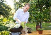 Gardens, Flowers and Greenery in Savannah / Enjoy the seasonal colors and gardens of Savannah!