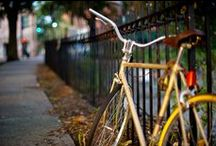 Bike Savannah / Tree lined streets, level terrain and great weather make Savannah a perfect place to ride a bike!
