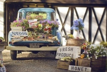 Farmers Markets / by Julia Marriott