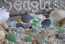 Seaglass  - The Search / by Julia Marriott