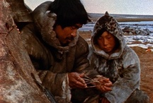 The Inuit Culture / by Julia Marriott