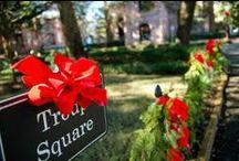 Tis the Season / Celebrate the holiday season in Savannah! We'll show y'all the Yule!  / by Visit Savannah