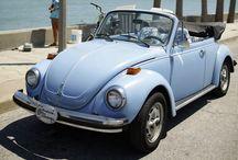 Slug bugs and cute cars