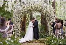 August Wedding Setting Inspiration / Matt & Deena :: Location :: Ideas  / by Deena Marie
