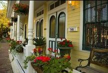 Springtime in Savannah / Traveling to historic Savannah, GA in the Springtime, you'll experience festivals, beautiful scenery in bloom, our famous Tour of Homes, garden tours and so much more!  / by Visit Savannah