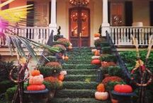 It's Fall, Y'all! / Enjoy pleasant temperatures, beautiful scenery and Savannah's festival season when you visit during the Fall!  / by Visit Savannah