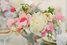 Floral / Flowers, arrangements, colors