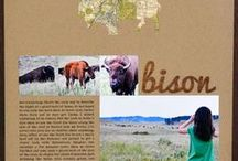 Scraps   Temp Yellowstone / Documenting my trip to WY, MT, ID, SD