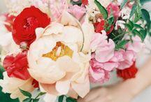 Florist wannabe / by Brooke Schultz