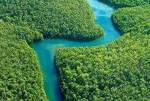 The Amazon / The Most Fascinating Place in The World