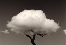 LOVE | Clouds