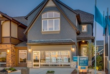 Showhome - The Hemlock Cove