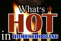 What's Hot in Homeschooling / The hottest pins in homeschooling from some of the hottest homeschool bloggers. Want to contribute to this board? Email psychowith6 [at] gmail [doct] com using your Pinterest email.Please pin as many others' pins as you add. / by Dr. Melanie Wilson @psychowith6