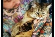 Tattoo & Animals / by Blogvictims