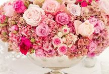 Shades of Pink, Magenta, Cerise