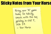 Equine Inspiration....Things to Remember / by Josyanne Frazee