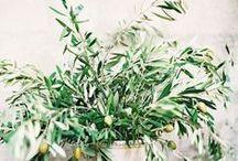 Garden / Botanical style