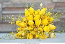 Bouquets - Single Colour