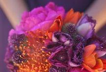 Bouquets - Bright Colours