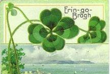 Luck of the Irish / by Suzanne Kondrat