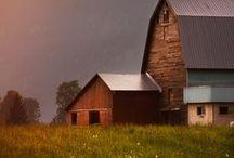 Farm Living / Barns, farm scenes, country living, farm animals and all things farm living.