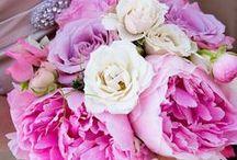 Wedding Wonderland / My strange addiction...weddings... / by Glynis Gilio