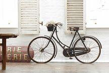 b i c y c l e s / Bicycle / fiets