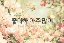 /Learning Korean/ / by Dyo Monica