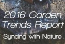 Garden Trends 2016 / Garden Media is excited to present our 2016 projected trends in collaboration with home and garden trend spotters.