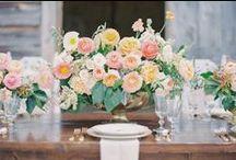 Wedding Ideas / by Michelle Porche