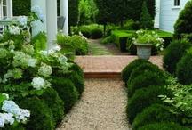 garden / by Marianne Simon Design