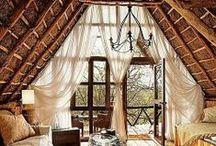 attics  / by Erin Austen Abbott | Amelia
