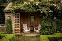 garden / by Elizabeth Cardinal
