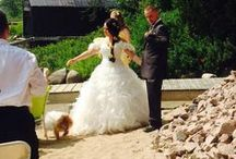 Wedding Dog / We had our Pomeranian Shandy in our wedding, wearing a cute little wedding dress of her own! :)