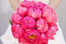 <3 My Wedding :) / by Sydney French