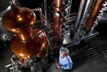 Media / by Glass Distillery