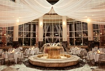 Carlson Center Rotunda and Conservatory | Minnesota Weddings / http://carlsontowers.bellagala.com/?fetch=yes / by Bellagala ©