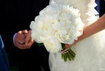 My Wedding / by Meg Vess