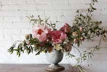 Flowers / Fresh flowers, garden flowers and bouquets