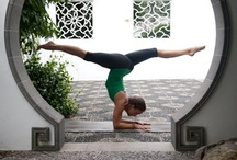 Yoga / by Amy Finazzo