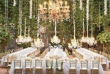 Nicole C - Bellagala Event Planner / Wedding inspirations for Event Planner Nicole C.