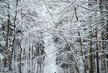 Let it snow! | Winterurlaub und Skifahren mit Kindern / Wir lieben Schnee und Skifahren, und genau darum geht es auf diesem Board: alles, was kalt und weiß und nass ist ;-)