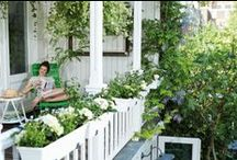 BALCONY & GARDEN / A board of nature, gardens, rooftop terraces, balconies and everything green at it's best <3