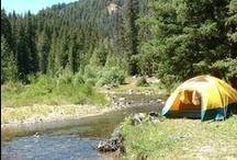Camping! / by Shannon Mavica