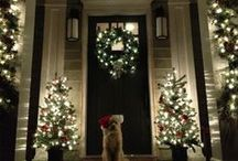 Decor - Christmas / by Kelly Fleming